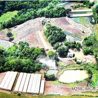 Área Rural em Áurea, produzindo Hortaliças !