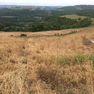 Área Rural Severiano de Almeida
